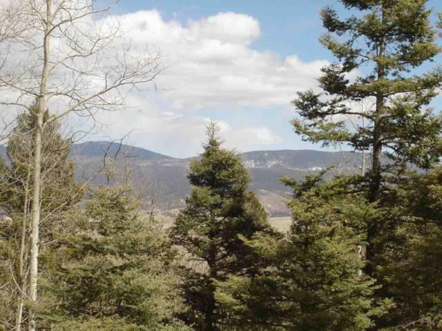 Lot 19 Taos Pines Ranch Subdivision, Angel Fire, NM 87710 (MLS #98816) :: Page Sullivan Group | Coldwell Banker Lota Realty
