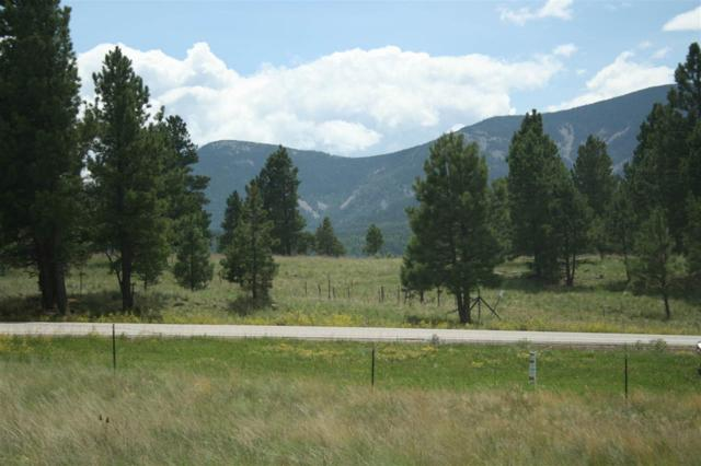 Lot 21 Wymans Black Lake Estates, Angel Fire, NM 87710 (MLS #98958) :: Page Sullivan Group | Coldwell Banker Lota Realty