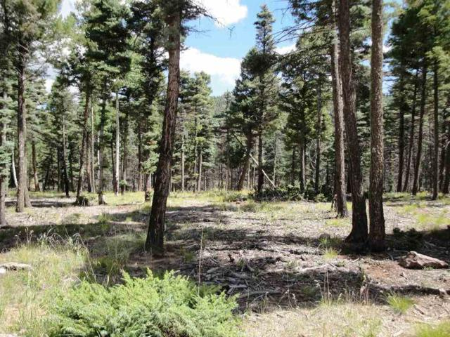 Lot 332 South Vail Overlook, Angel Fire, NM 87710 (MLS #99052) :: Page Sullivan Group | Coldwell Banker Lota Realty