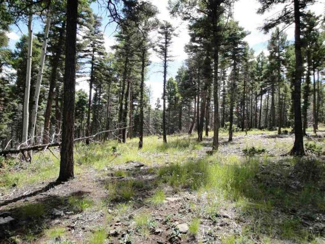 Lot 337 South Vail Overlook, Angel Fire, NM 87710 (MLS #99053) :: Page Sullivan Group | Coldwell Banker Lota Realty