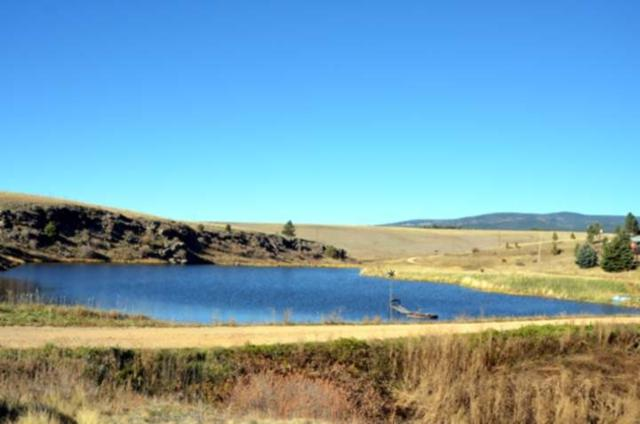 5.2 acres Black Lake Resorts, Black Lake, NM 87710 (MLS #99199) :: The Chisum Realty Group