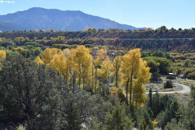 State Rd 230, Valdez, NM 87580 (MLS #99224) :: Page Sullivan Group | Coldwell Banker Lota Realty