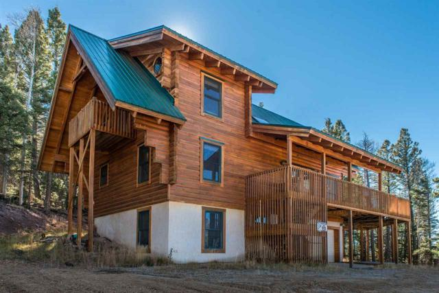136 Panorama Way, Angel Fire, NM 87710 (MLS #99283) :: The Chisum Realty Group