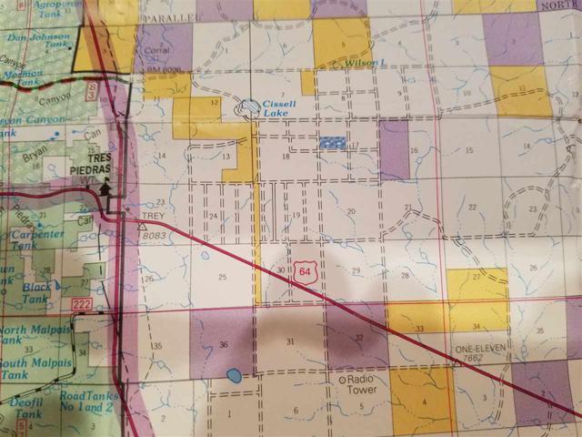 Off Colorado Rd, Tres Piedras, NM 87577 (MLS #99293) :: Page Sullivan Group