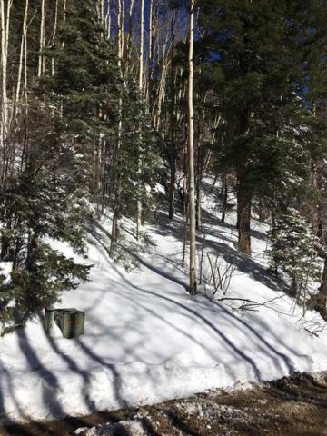 8 Coyote, Taos Ski Valley, NM 87525 (MLS #99557) :: Page Sullivan Group | Coldwell Banker Lota Realty