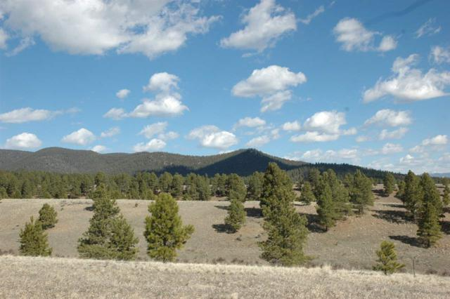 Lots 3 5 Blk 9 Val Verde V, Angel Fire, NM 87710 (MLS #99623) :: Page Sullivan Group | Coldwell Banker Mountain Properties