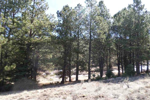 344 Vail Loop, Angel Fire, NM 87710 (MLS #99627) :: Angel Fire Real Estate & Land Co.