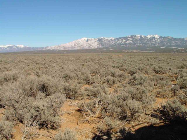 LOT 9 Cty Rd. B-121/ Dunn Eagle Subd., Arroyo Hondo, NM 87513 (MLS #99640) :: Page Sullivan Group | Coldwell Banker Lota Realty