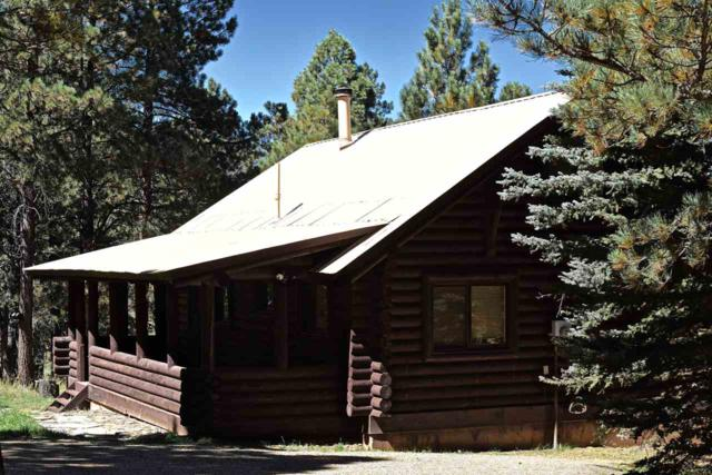 41 Corner Park Rd, Angel Fire, NM 87710 (MLS #99648) :: The Chisum Realty Group