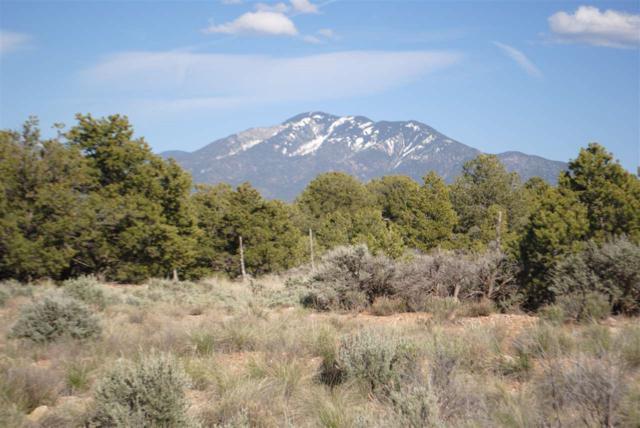 Lot 12 Sandia Canyon, Arroyo  Hondo, NM 87513 (MLS #99766) :: Page Sullivan Group | Coldwell Banker Lota Realty