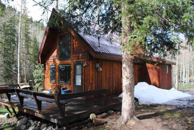 1301 State Road 150, Taos Ski Valley, NM 87525 (MLS #99909) :: Page Sullivan Group | Coldwell Banker Lota Realty