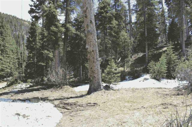 LOT 23 Hidden Valley, Red River, NM 87558 (MLS #99982) :: Page Sullivan Group | Coldwell Banker Lota Realty