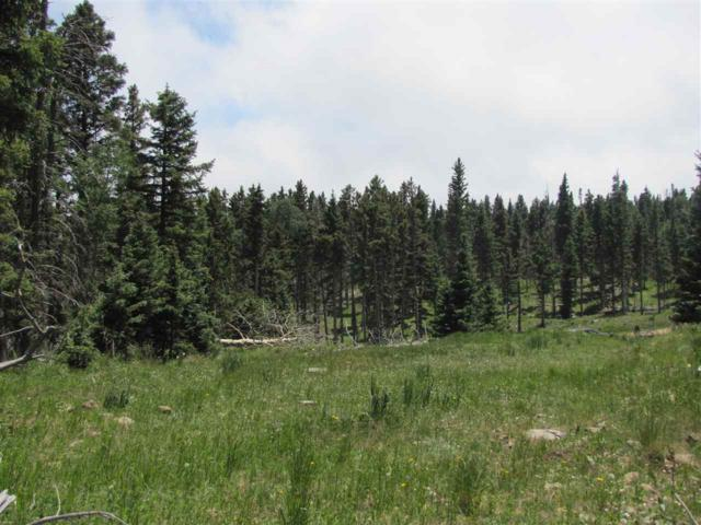 Lot 22 Hinz Drive, Angel Fire, NM 87710 (MLS #100132) :: The Chisum Group
