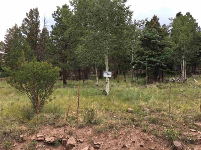 Lot 298 South Vail Overlook, Angel Fire, NM 87710 (MLS #100282) :: Page Sullivan Group | Coldwell Banker Lota Realty