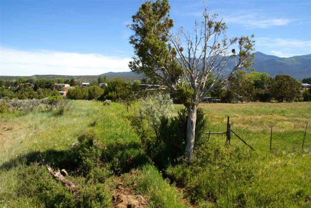 Vista Lejos Road, Arroyo Seco, NM 87514 (MLS #100317) :: Page Sullivan Group | Coldwell Banker Lota Realty