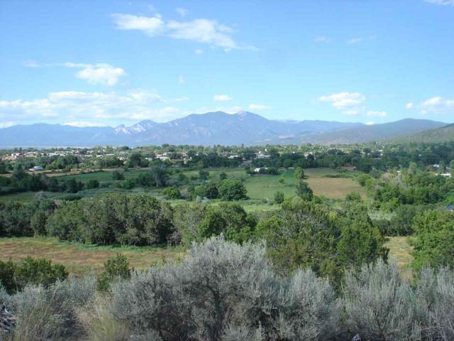 At Torrez Road, Ranchos de Taos, NM 87557 (MLS #100432) :: Page Sullivan Group