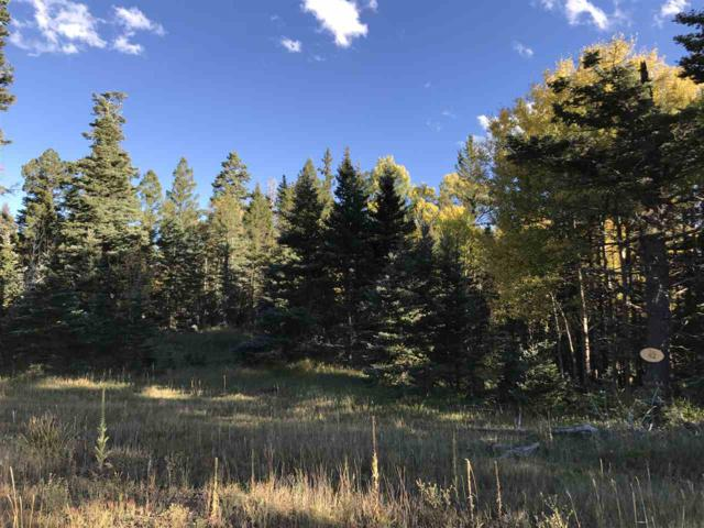 Lot 82 Elk Meadow, Ange Fire, NM 87710 (MLS #100729) :: Page Sullivan Group | Coldwell Banker Lota Realty