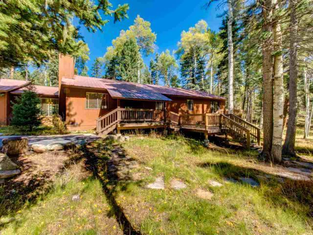 46 Mountain Lake Way, Angel Fire, NM 87710 (MLS #100791) :: The Chisum Group