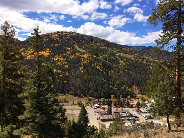 2 AC Commercial, Red River, NM 87558 (MLS #100814) :: The Chisum Group
