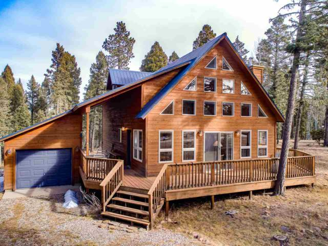 49 Alpine Lake Way, Angel Fire, NM 87710 (MLS #100934) :: Page Sullivan Group | Coldwell Banker Lota Realty