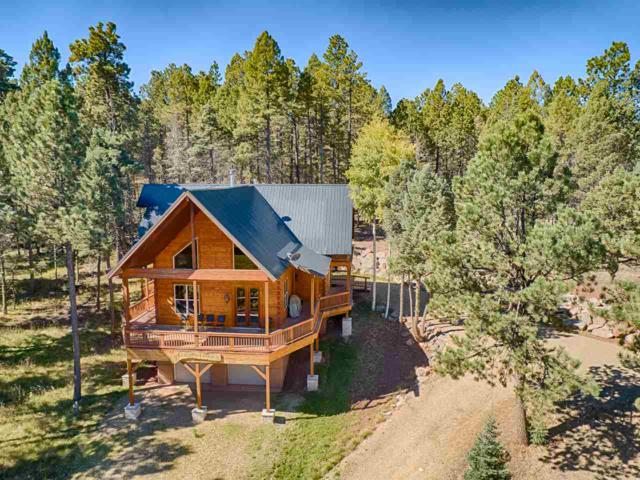 88 Back Basin Rd, Angel Fire, NM 87710 (MLS #101001) :: Angel Fire Real Estate & Land Co.