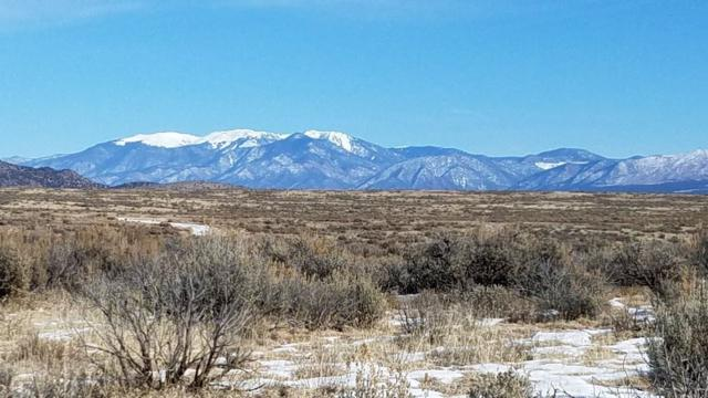 Coyote Moon Lot B, El Prado, NM 87529 (MLS #101086) :: The Chisum Realty Group