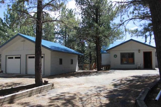 89 Halo Pines Terrace, Angel Fire, NM 87710 (MLS #101295) :: Page Sullivan Group | Coldwell Banker Mountain Properties