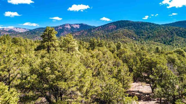 265 Gallina Canyon, Valdez, NM 87514 (MLS #101356) :: Page Sullivan Group | Coldwell Banker Lota Realty
