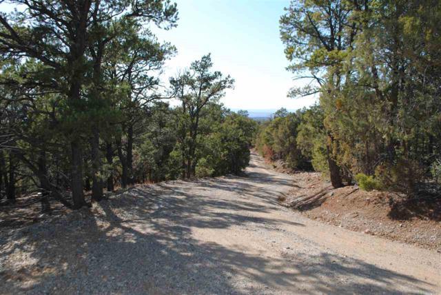 Cerrito Colorado, Valdez, NM 87580 (MLS #101379) :: Page Sullivan Group | Coldwell Banker Lota Realty