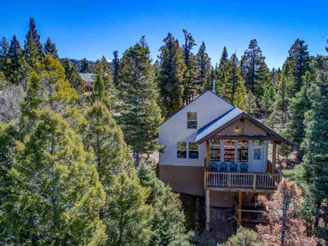 45 S Vail Overlook, Angel Fire, NM 87710 (MLS #101437) :: Page Sullivan Group | Coldwell Banker Lota Realty