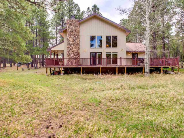 33 Broadmoor Way, Angel Fire, NM 87710 (MLS #101634) :: Page Sullivan Group | Coldwell Banker Lota Realty