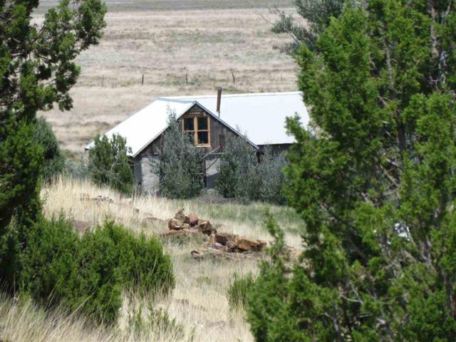 1176 Shw 271, Wagon Mound, NM 87732 (MLS #101749) :: Page Sullivan Group | Coldwell Banker Mountain Properties