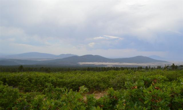 A1A Forest Road 132A, Lama, NM 87556 (MLS #101786) :: Page Sullivan Group | Coldwell Banker Mountain Properties