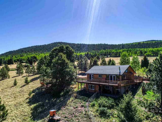 40 Cr B38, Angel Fire, NM 87710 (MLS #101789) :: The Chisum Realty Group