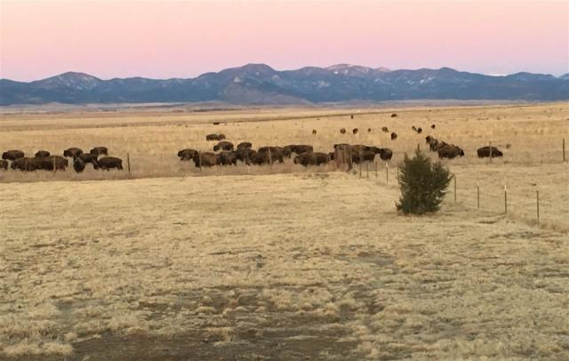 1201 State Hwy 58, Cimarron, NM 87714 (MLS #101831) :: The Chisum Realty Group
