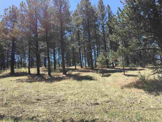 Lot 58 Valley Road, Angel Fire, NM 87710 (MLS #102053) :: Angel Fire Real Estate & Land Co.