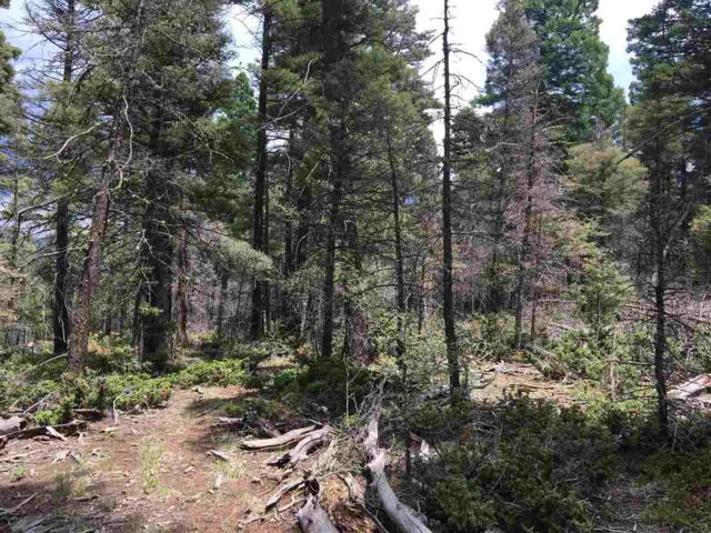 Lot 19 Summit Place, Angel Fire, NM 87710 (MLS #102111) :: Angel Fire Real Estate & Land Co.
