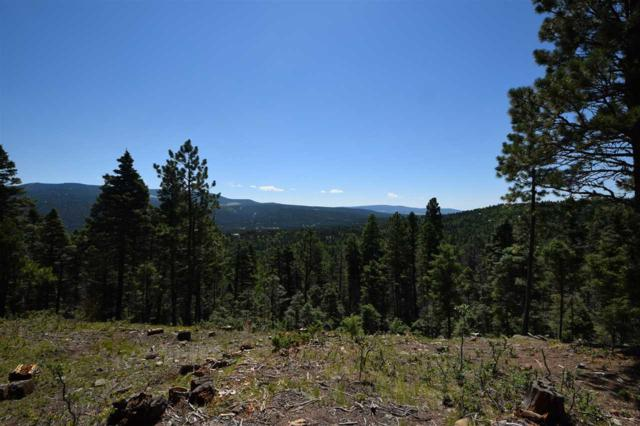 Lot 1492 Peralta Dr, Angel Fire, NM 87710 (MLS #102126) :: Page Sullivan Group | Coldwell Banker Lota Realty