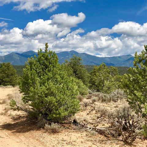 Sangre De Cristo Mountain Drive, Arroyo Hondo, NM 87513 (MLS #102179) :: Page Sullivan Group | Coldwell Banker Mountain Properties