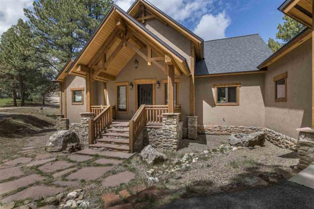 17 Tam Oshanter Terr, Angel Fire, NM 87710 (MLS #102288) :: Page Sullivan Group