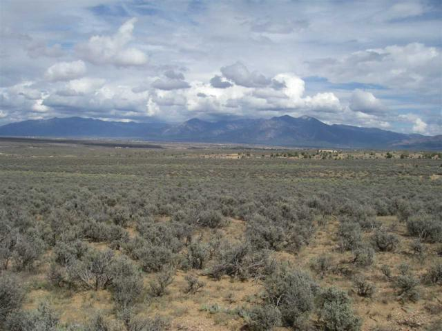 County Rd 110, Ranchos de Taos, NM 87557 (MLS #102493) :: Page Sullivan Group | Coldwell Banker Mountain Properties