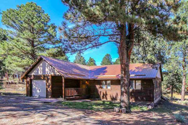 24 Valle Grande Trail North, Angel Fire, NM 87710 (MLS #102499) :: The Chisum Realty Group