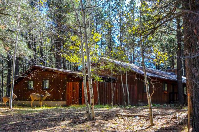 52 Broadmoor, Angel Fire, NM 87710 (MLS #102519) :: Page Sullivan Group | Coldwell Banker Mountain Properties