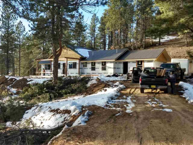 25 Valley Rd, Angel Fire, NM 87710 (MLS #102577) :: Page Sullivan Group | Coldwell Banker Mountain Properties