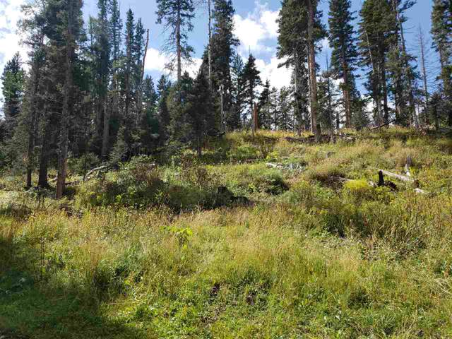 7 Hidden Valley, Red River, NM 87558 (MLS #102690) :: Angel Fire Real Estate & Land Co.