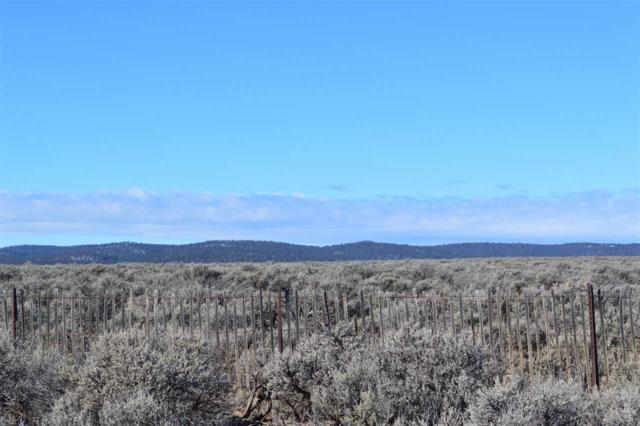 22701 Us Hwy 64, Tres Piedras, NM 87577 (MLS #102699) :: Page Sullivan Group | Coldwell Banker Mountain Properties