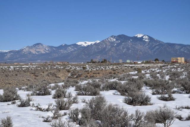 Blueberry Hill Road, El Prado, NM 87529 (MLS #102769) :: The Chisum Realty Group