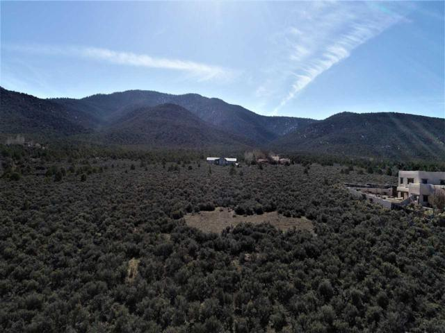 2 acres off Monterey, Taos, NM 87571 (MLS #102780) :: Page Sullivan Group | Coldwell Banker Mountain Properties
