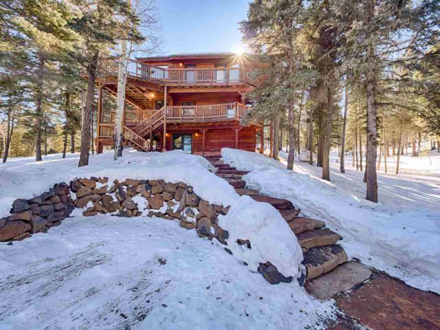 60 Taos Dr, Angel Fire, NM 87710 (MLS #102793) :: Angel Fire Real Estate & Land Co.