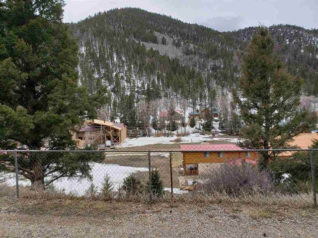 1661 State Hwy 578, Red River, NM 87558 (MLS #102964) :: The Chisum Realty Group